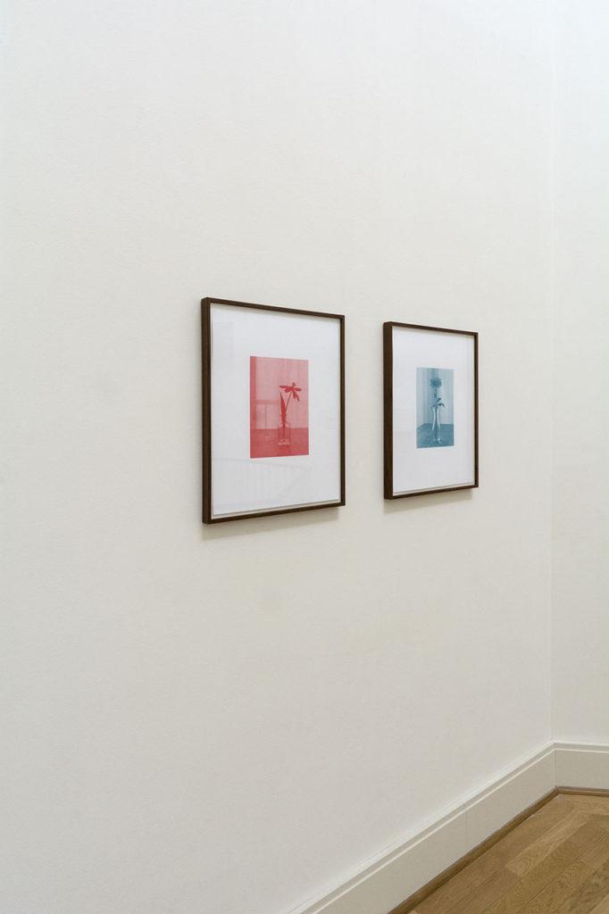 Thyra Schmidt, Rendezvous, 2018 / 2019, Fotografien von Blumenstillleben, jeweils einfarbiger Siebdruck auf Papier