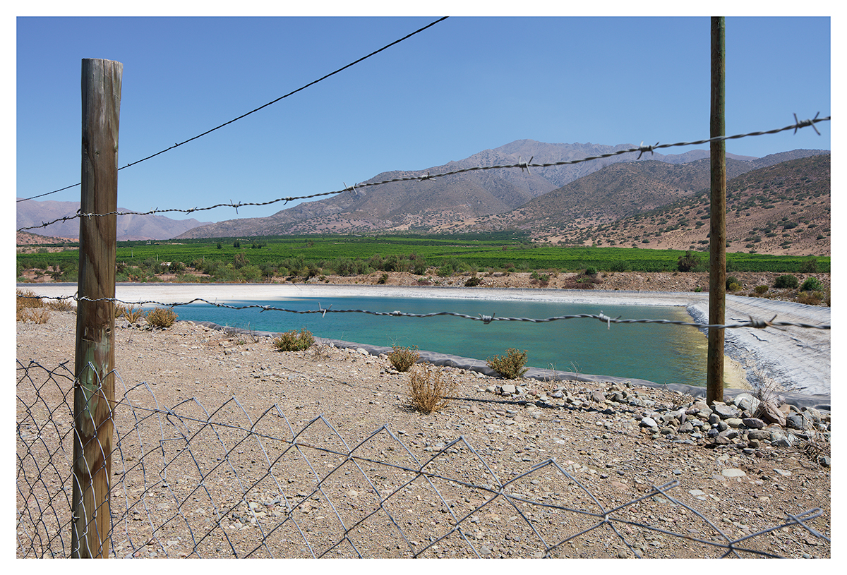 image: Whose Water – Tropical Dessert (Avocado plantation, Chincolco, Petorca, Chile, 2019)